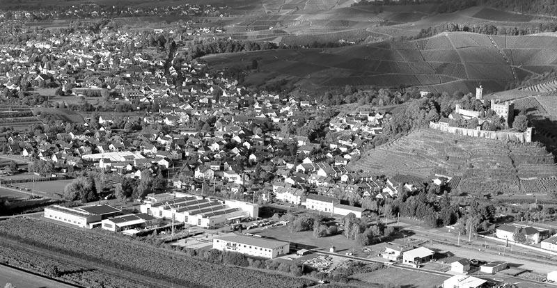 Luftaufnahme der Alois Müller Fertigungshalle (Ferne)